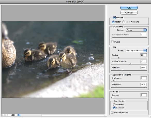 ducks_5