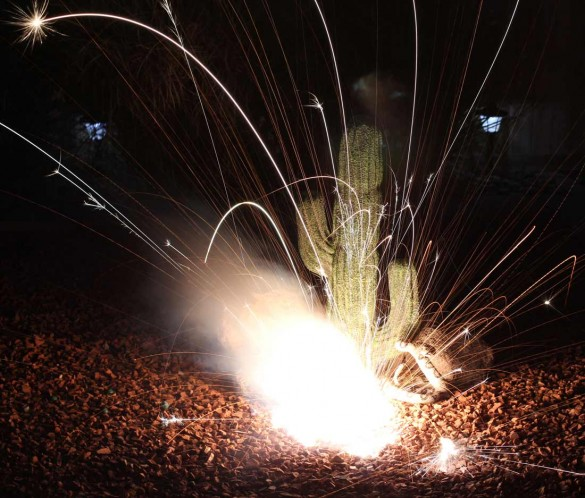 Fourth of July Fireworks on a fake cactus. Long exposure 50mm Canon 1.4